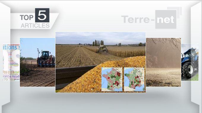 Top articles - Cette semaine: rendements en maïs grain,météo de fin d'année, T7 New Holland