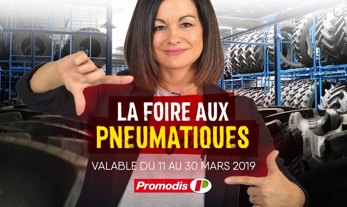 FOIRE AUX PNEUMATIQUES